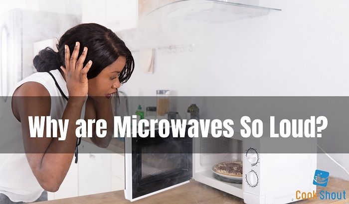 Why are Microwaves So Loud