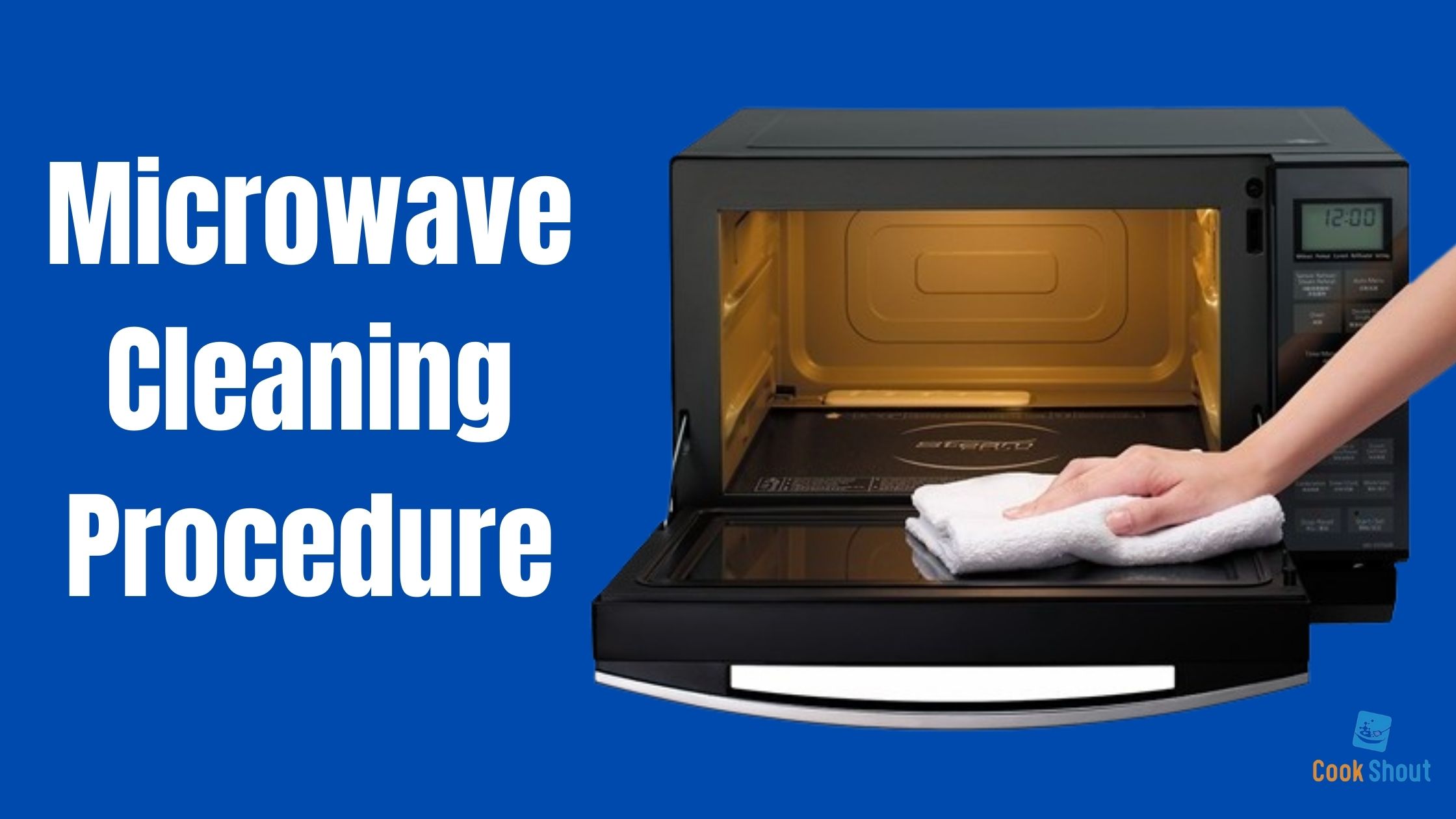 Microwave Cleaning Procedure